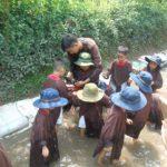 nong-trai-tree (7)