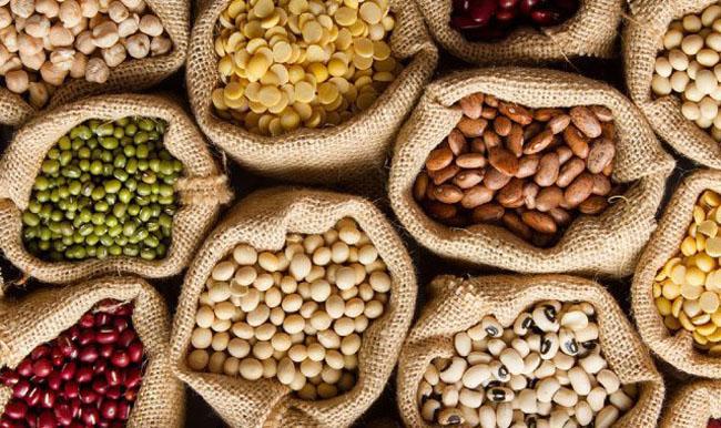 Các loại hạt ngũ cốc chứa nhiều protein.