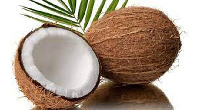 Dừa cũng là thức uống ưa thích cho trẻ trong mùa nóng.