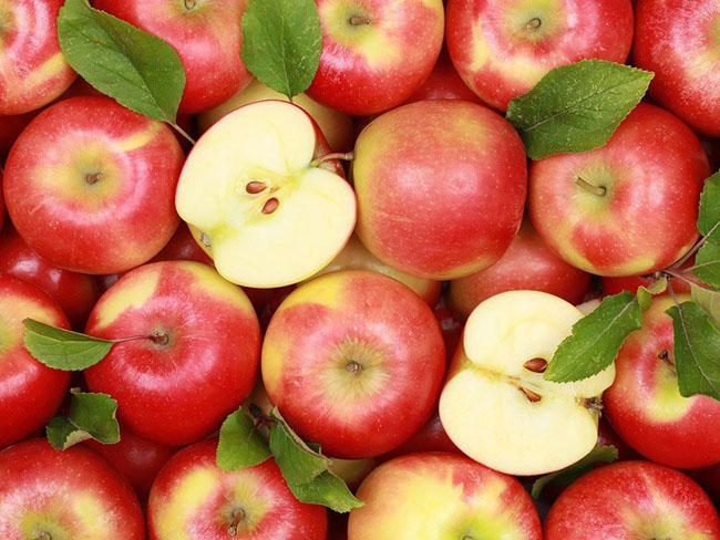 Táo là trái cây không thể thiếu trong mọi thực đơn của các gia đình.