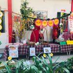 Mung-xuan-2019-cung-worldkids (53)