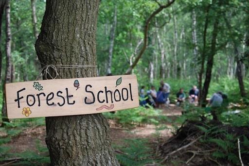 phương pháp forest school