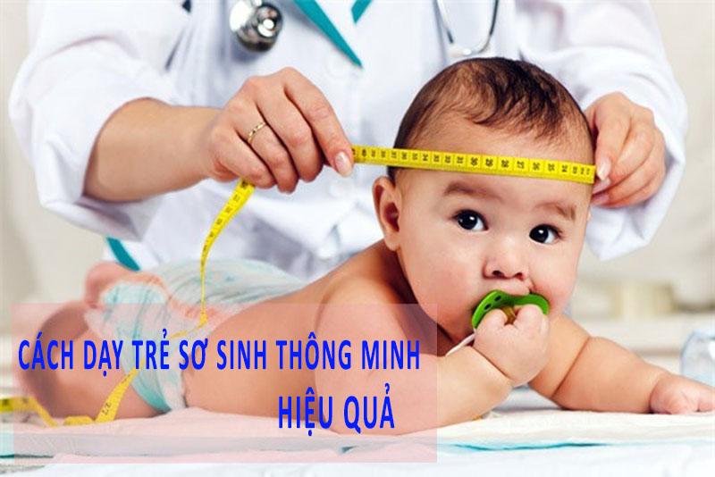 Các phương pháp dạy trẻ sơ sinh thông minh được nhiều bậc cha mẹ áp dụng hiện nay.