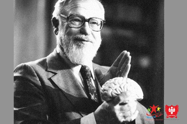 Kích thích não phải là mục tiêu của phương pháp dạy con Glenn Doman.
