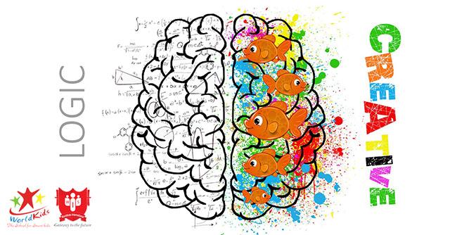 Kích thích 2 bán cầu não là phương pháp dạy trẻ thông minh sớm
