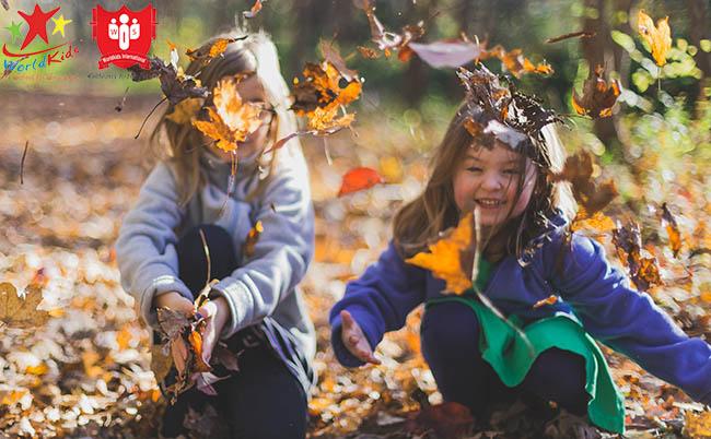 phương pháp dạy montessori chú trọng trải nghiệm